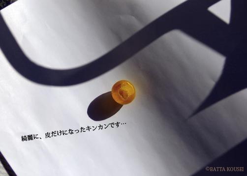 11初大ちゃんのキンカン作品.jpg