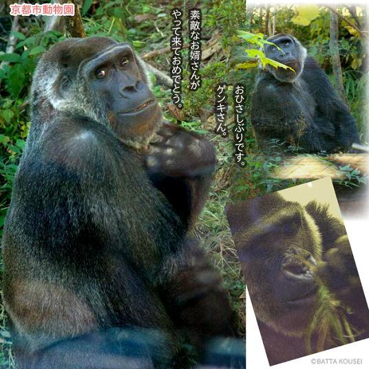 10京都ゲンキ・ブログ.JPG