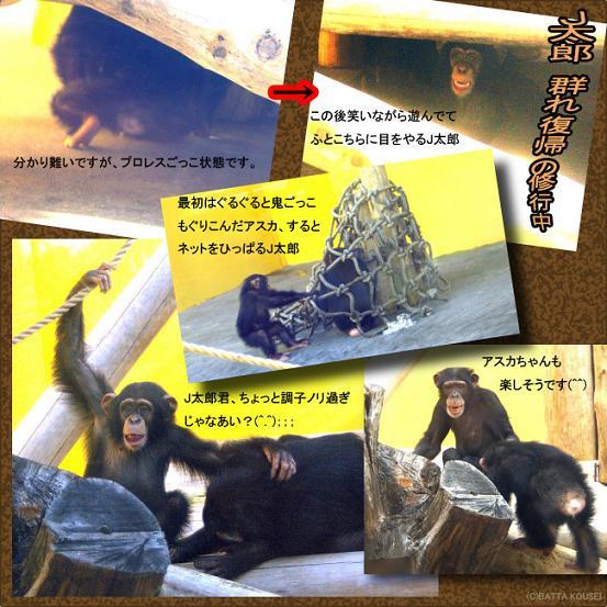J太郎とアスカ笑いまくりブログ用.JPG