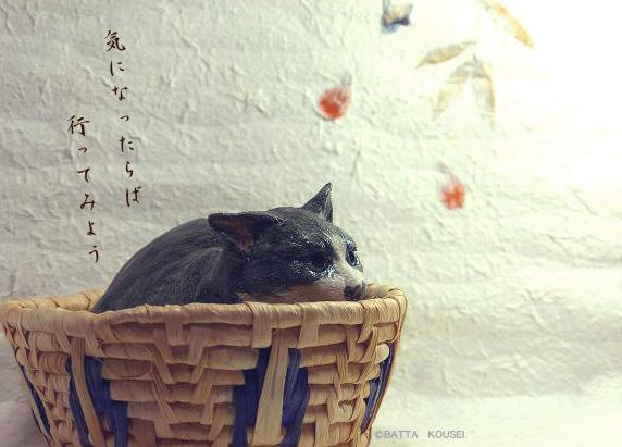 11展示会紹介用写真①.jpg