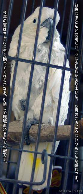 11・5・12大ちゃん正面.jpg